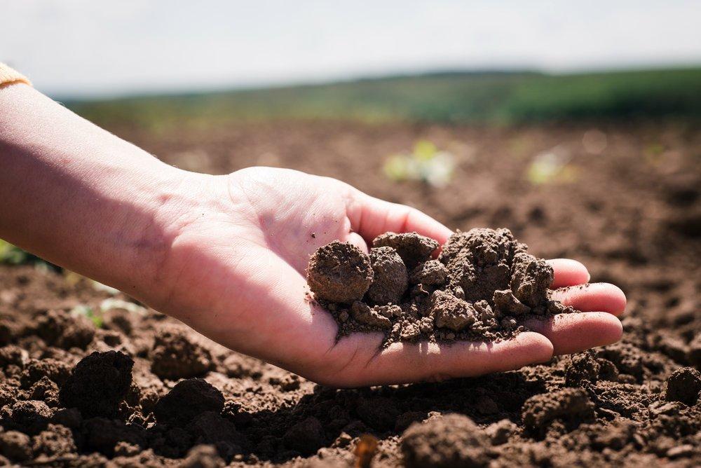 Ingegneri agronomici argentini alla scoperta delle soluzioni Biovegetal per la terra