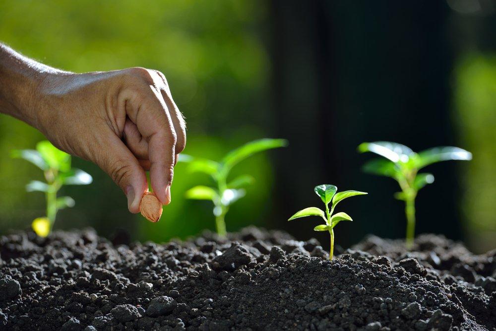 Il Decalogo del suolo: a Bologna, 10 temi per salvaguardare una risorsa