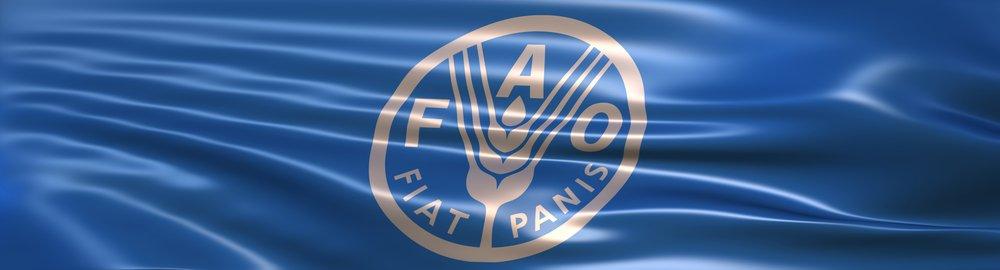 Lo sviluppo sostenibile al centro del II simposio internazionale di agro-ecologia.