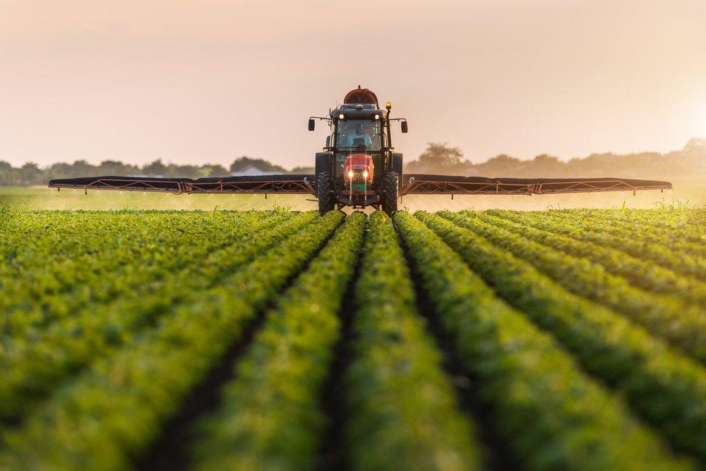 Ammendante organico compostato: cos'è e perché è importante per le piante