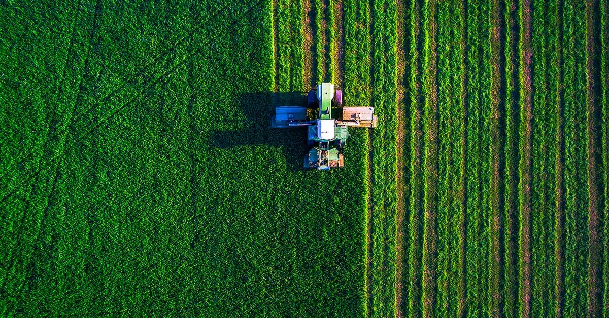 Il Bio Vegetal, l'ammendante organico per l'agricoltura professionale