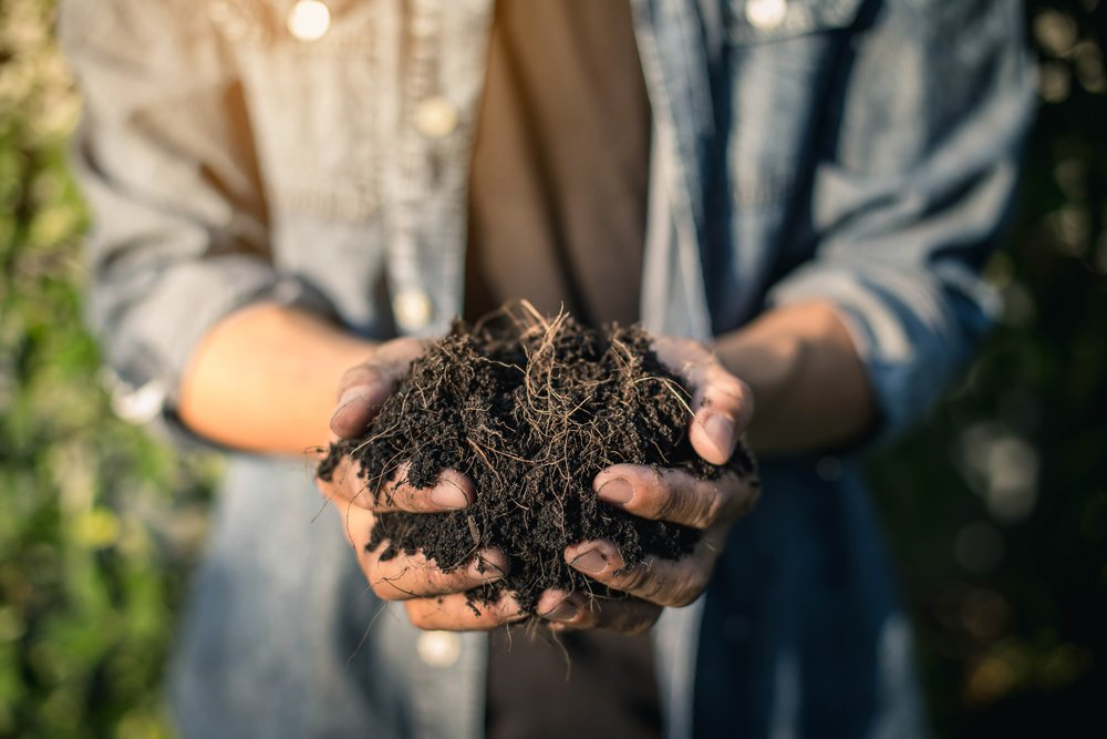 Gli effetti del compost sul terreno
