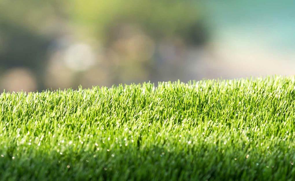 Fertilizzanti organici per manti erbosi