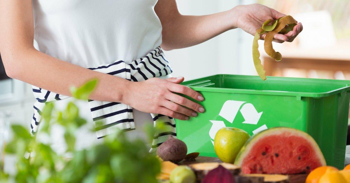 Regole per un corretto conferimento dei rifiuti: parliamo della carta e dell'umido