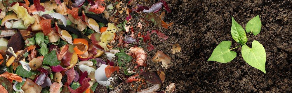 Il settore del biowaste non si ferma: la raccolta sale a 7,1 mln di tonnellate